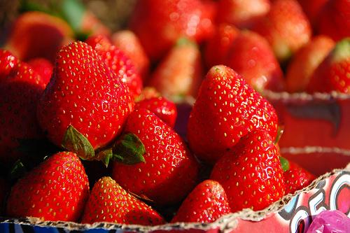 Strawberry Festival 2014