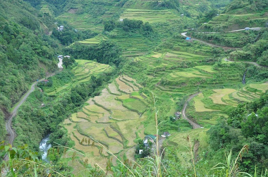 Hapao Rice Terraces in Hungduan