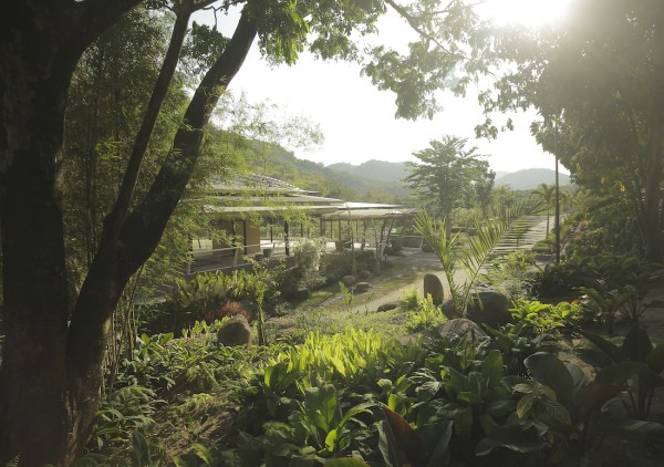 Find peace and quiet in the luscious green landscape of Green Canyon