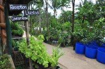 Tour Inside Costales Organic Farms