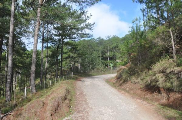 Road to Besao