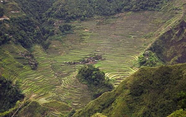 Batad Rice Terraces by Lon&Queta