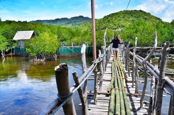 Lamanoc Island Bamboo Footbridge