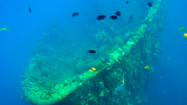 Coron Ship Wrecks photo by PhilippineDiveSafari.com