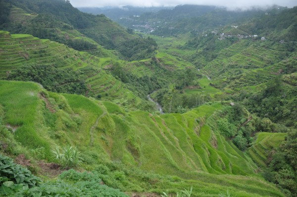 Banaue Ifugao