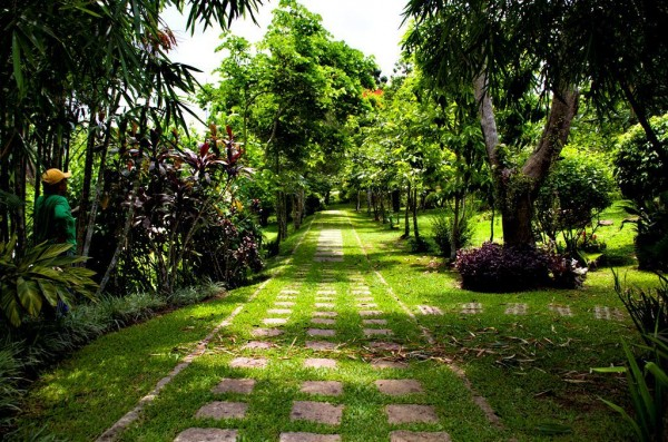 Have a relaxing walk amidst Anya's verdant gardens and manicured grounds.