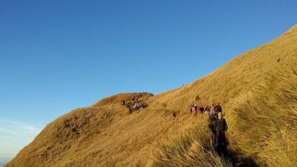 Mt Pulag Trails