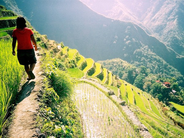 Rice Terraces in Batad photo by eesti