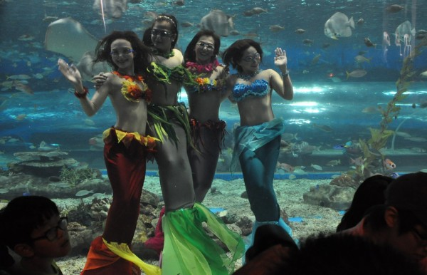Mermaids at the Manila Ocean Park