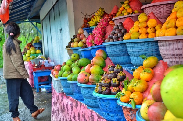 Fruit Stands along the road