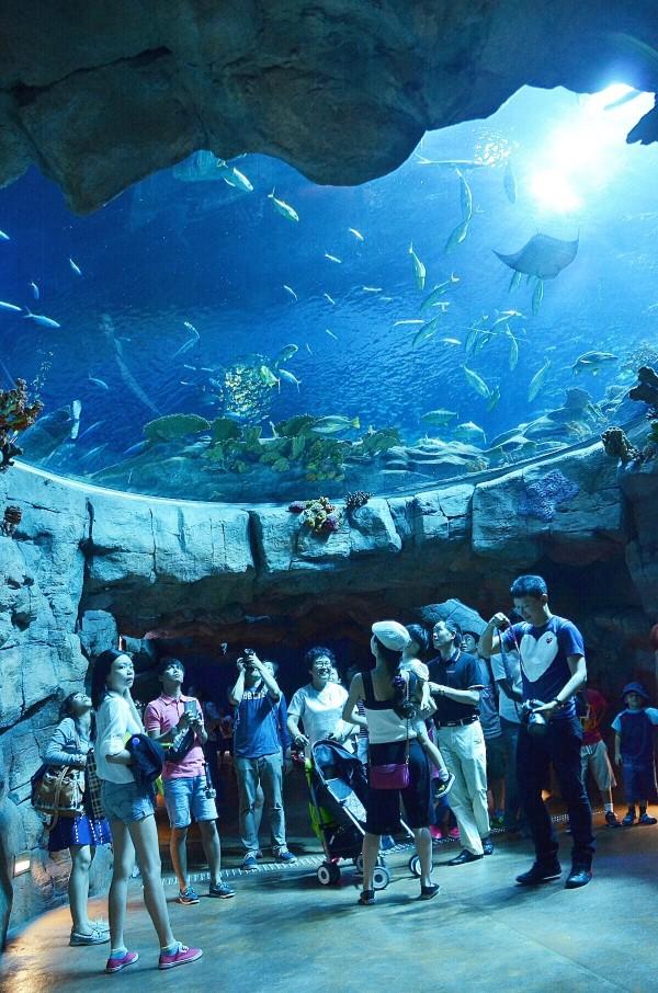 Inside The Grand Aquarium
