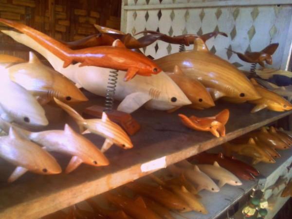 Buy Thresher shark souvenirs