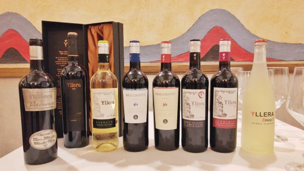 Grupo Yllera Wine Selection
