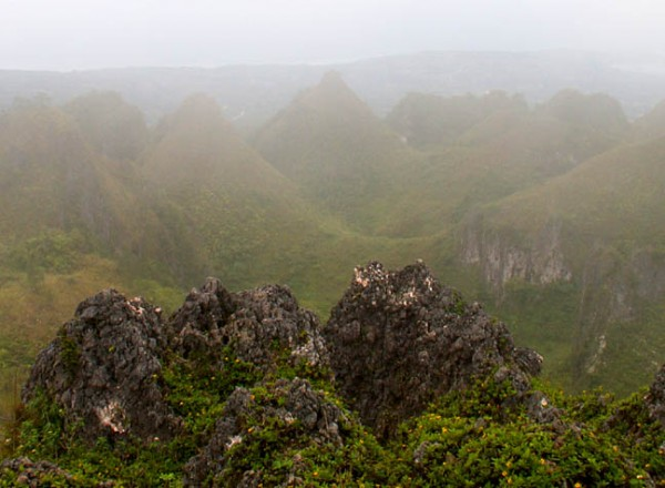 Misty View of the Peak