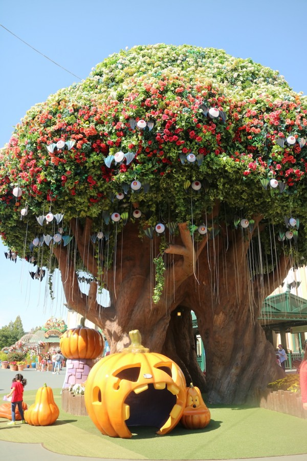 Famous Banyan Tree inside Everland