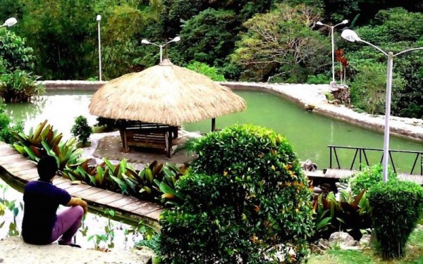 The nipa hut in the middle of the pond