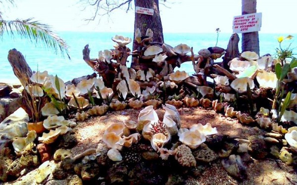 Graveyard at Giant Clam Sanctuary