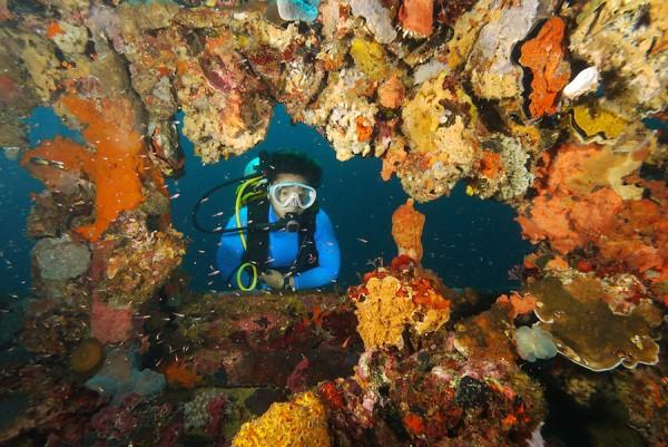 Diver on Kyokuzan maru