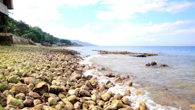 Alegria shoreline