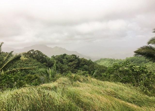 Looks like the summit of Mt. Naguling