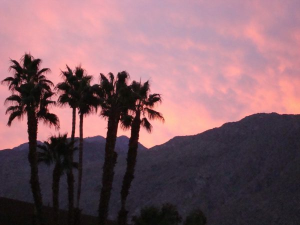 Sunset in Palm Springs