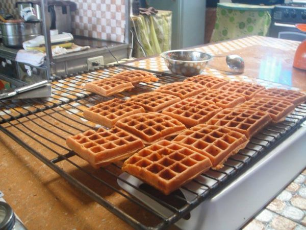 Hot waffles, freshly baked with coconut flour and healthy grains