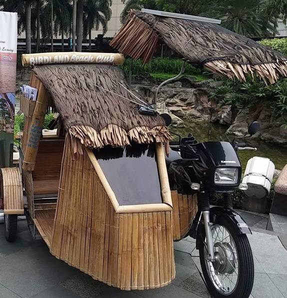 Birdland's bamboo trike exhibited at an event in Greenbelt