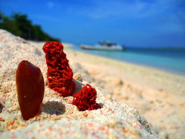 Pink Sand Beach in Zamboanga City