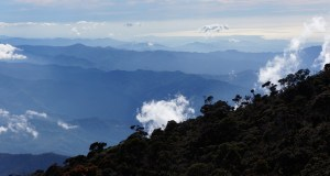 Mount Kinabalu Challenge