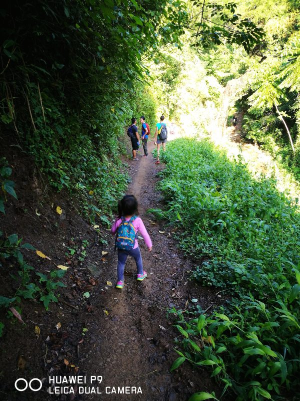 Kid Friendly Trails en route to Mt. Babag