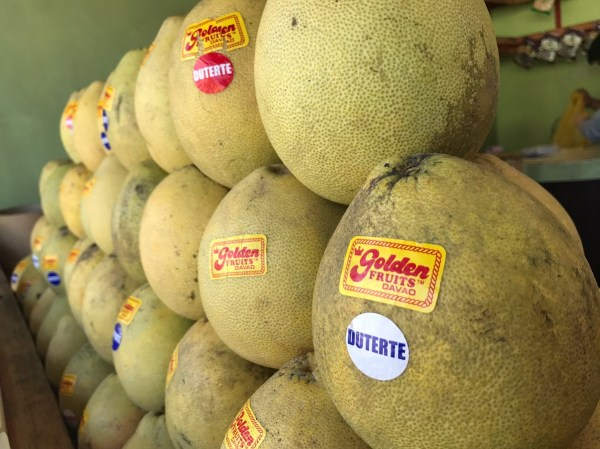 Golden Pomelo - Davao Travel Guide