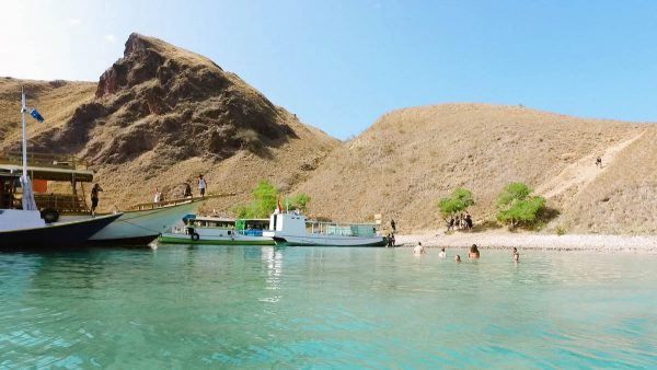 Swimming in Padar Island