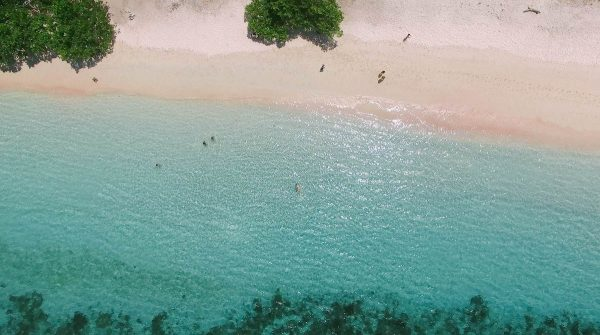 bird's-eye view of the pink beach