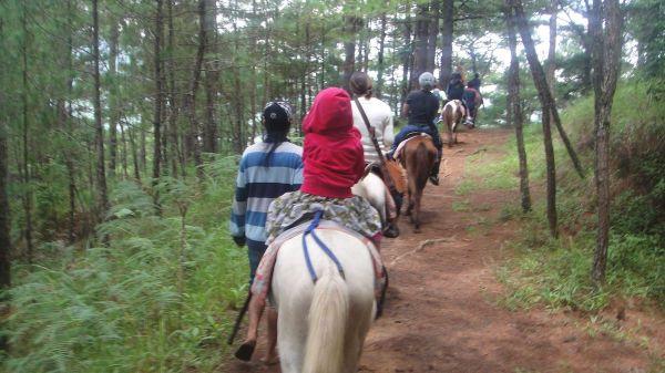 Horseback Riding in Camp John Hay, Baguio
