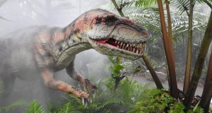 Uncover a Lost World at Zoo-Rassic Park
