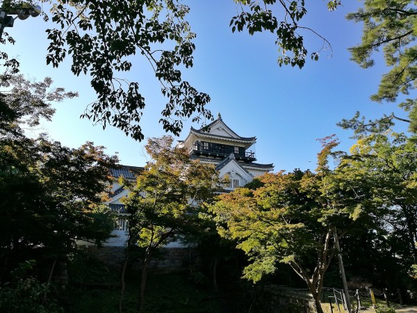 Early Morning at Okazaki Temple
