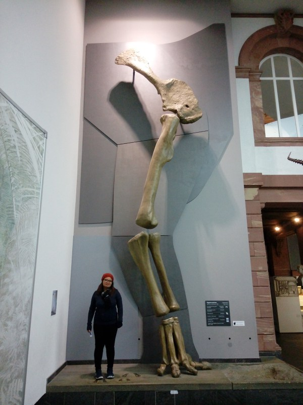 Me with the Supersaurus leg replica