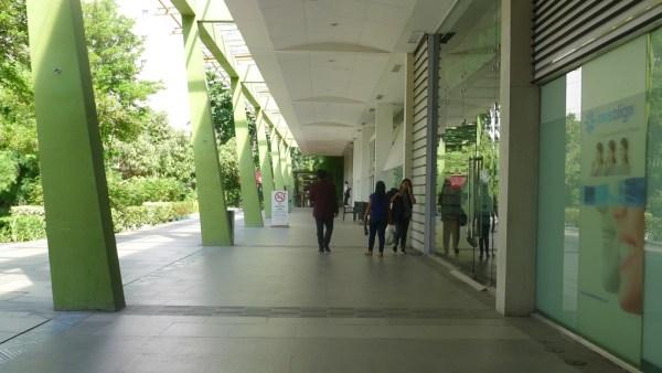 Window shop in malls