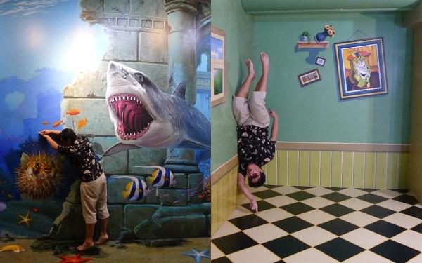 Shark Illusion