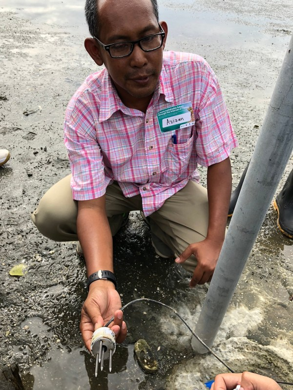 Malaysian Engineer explaining how the soil humidity is being measured