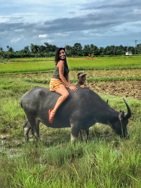 Grant seizes the moment to ride a carabao (water buffalo) in the rice fields of Motag Living Museum, beside Boracay, Philippines