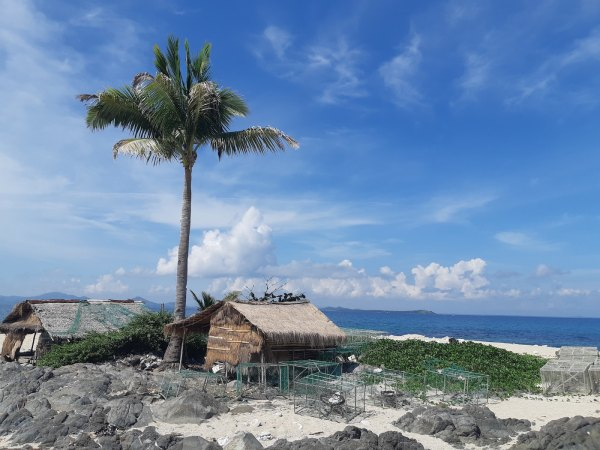 Travel Guide to Gigantes Islands Blog John Cosio via Unsplash