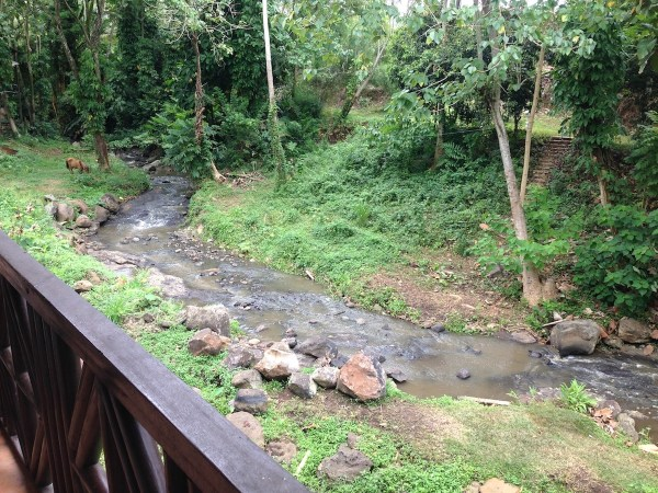 The picturesque view from our bedroom at Malagos Garden Resort