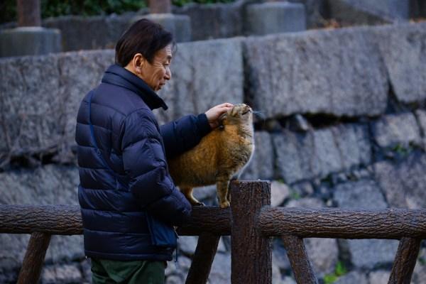 Trip to Osaka Japan via Klook