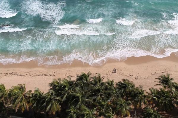Tropical Beach in Puerto Rico