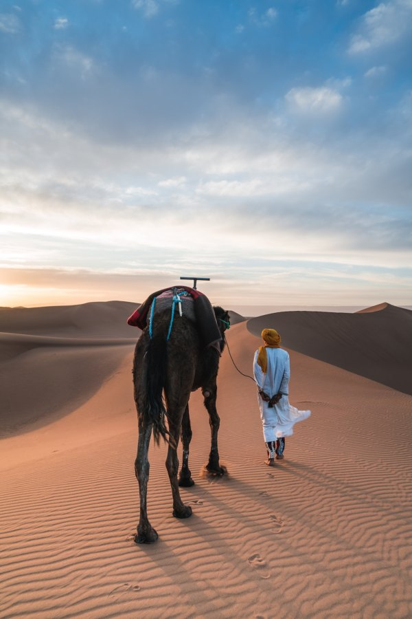 Camel Ride in Morocco by Federico Gutierrez via Unsplash