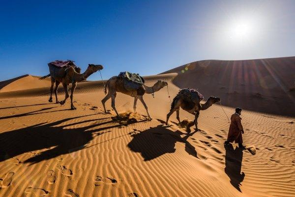 Sahara Desert by Sergey Pesterev via Unsplash