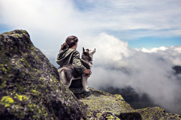 Hike with your pet
