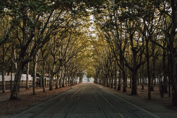 Early Morning in Bordeaux by Guillaume Flandre via Unsplash