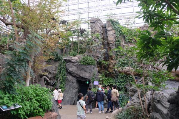 Osaka Aquarium Entrance